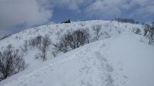 米山山頂間近